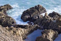 Ajardine com água do mar ou do oceano entre rochas Imagens de Stock