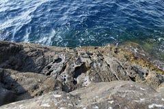 Ajardine com água e as rochas na ilha de Thassos, Grécia, ao lado da associação natural chamada Giola Imagens de Stock Royalty Free