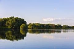Ajardine com água e vegetação no delta de Danúbio Fotografia de Stock