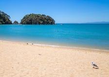 Ajardine com águas do oceano, Ka do Sandy Beach e da turquesa Fotografia de Stock Royalty Free