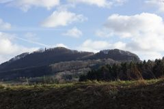 ajardine com a árvore no dia ensolarado do advento do céu azul em dezembro Fotografia de Stock Royalty Free