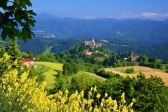 Ajardine com árvores, campo amarelo e um castelo longe Imagens de Stock