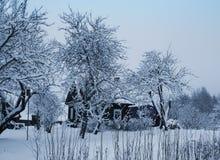 Ajardine com árvores cobertos de neve e a casa rural em Letónia, Europa do leste Imagens de Stock Royalty Free