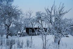 Ajardine com árvores cobertos de neve e a casa rural velha Imagem de Stock Royalty Free