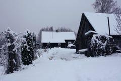 Ajardine com árvores cobertos de neve e a casa rural velha em Letónia, Europa do leste Imagem de Stock