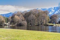 Ajardine com árvores da montanha e um rio na parte dianteira Fotografia de Stock Royalty Free