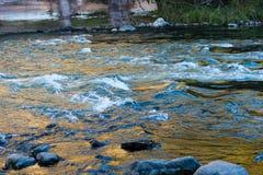 Ajardine com árvores das montanhas e um rio na parte dianteira Foto de Stock Royalty Free