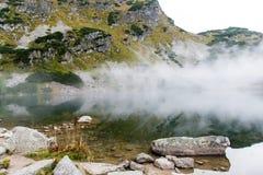 Ajardine com árvores das montanhas e um rio na parte dianteira Fotos de Stock