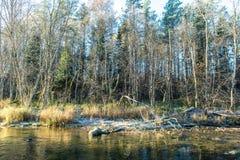 Ajardine com árvores das montanhas e um rio na parte dianteira Fotografia de Stock
