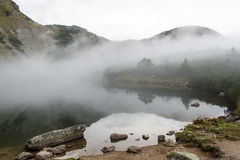 Ajardine com árvores das montanhas e um rio na parte dianteira Fotos de Stock Royalty Free