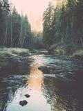 ajardine com árvores das montanhas e um rio na parte dianteira no outono - Fotografia de Stock Royalty Free