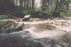 ajardine com árvores das montanhas e um rio na parte dianteira - vintage ef Fotografia de Stock Royalty Free