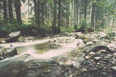 ajardine com árvores das montanhas e um rio na parte dianteira - vintage ef Fotos de Stock Royalty Free