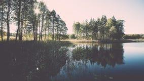ajardine com árvores das montanhas e um rio na parte dianteira - vintage ef Foto de Stock Royalty Free