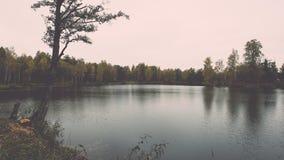 ajardine com árvores das montanhas e um rio na parte dianteira - vintage ef Imagens de Stock Royalty Free