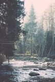 ajardine com árvores das montanhas e um rio na parte dianteira - vintage fi Imagens de Stock