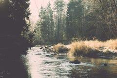 ajardine com árvores das montanhas e um rio na parte dianteira - vintage fi Imagem de Stock