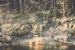 ajardine com árvores das montanhas e um rio na parte dianteira - vintage fi Fotografia de Stock Royalty Free