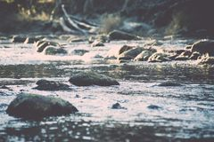 ajardine com árvores das montanhas e um rio na parte dianteira - vintage fi Imagem de Stock Royalty Free