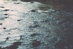 ajardine com árvores das montanhas e um rio na parte dianteira - vintage fi Fotos de Stock Royalty Free