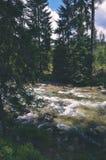 ajardine com árvores das montanhas e um rio na parte dianteira - vintage com referência a Imagem de Stock
