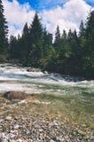 ajardine com árvores das montanhas e um rio na parte dianteira - vintage com referência a Fotografia de Stock Royalty Free