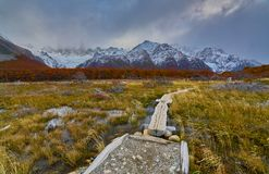 Ajardine com árvores do outono, o céu nebuloso e a neve nas montanhas no parque nacional nacional do Los Glaciares do parque Imagens de Stock Royalty Free