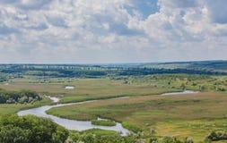 Ajardine com árvores e um rio na parte dianteira Fotos de Stock Royalty Free