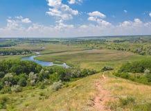 Ajardine com árvores e um rio na parte dianteira Imagens de Stock Royalty Free