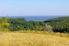 Ajardine com árvores, prado, montes e rio Fotos de Stock