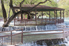 Ajardine com árvores verdes e um córrego da água Imagens de Stock Royalty Free