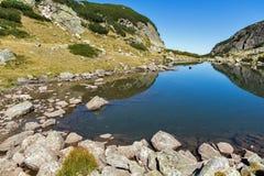 Ajardine com agua potável no lago pequeno, montanha de Rila Fotos de Stock Royalty Free