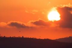 Ajardine com ajuste vermelho do sol atrás das nuvens e da silhueta escuras Imagens de Stock