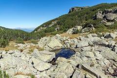 Ajardine com arbustos e pedras na montanha de Rila Imagens de Stock