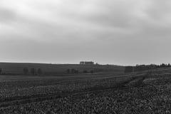 Ajardine com arquivado e nuvens no outono atrasado Imagens de Stock Royalty Free