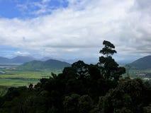 Ajardine com as árvores da selva no primeiro plano e as montanhas pequenas no fundo Fotos de Stock Royalty Free