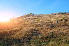 Ajardine com as árvores do céu azul e do outono e escove em cima dos montes da pastagem Imagem de Stock