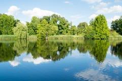 Ajardine com as árvores e a grama, refletindo na água Imagem de Stock Royalty Free
