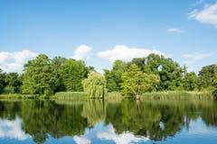Ajardine com as árvores e a grama, refletindo na água Foto de Stock