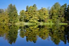 Ajardine com as árvores que refletem no lago no outono Imagem de Stock