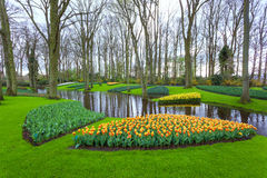 Ajardine com as flores e o córrego bonitos de florescência da água em Keukenhof Imagem de Stock Royalty Free