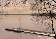Ajardine com as gaivota que sentam-se em lanternas pelo lago congelado Imagem de Stock Royalty Free