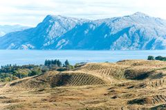 Ajardine com as montanhas e o lago bonitos selvagens dos campos do scottish Imagem de Stock