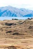 Ajardine com as montanhas e o lago bonitos selvagens dos campos do scottish Fotos de Stock Royalty Free