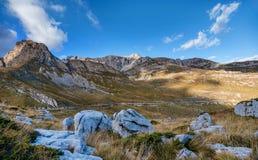 Ajardine com as montanhas no parque nacional Durmitor, Monteneg Imagem de Stock