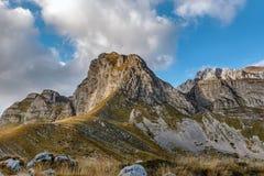 Ajardine com as montanhas no parque nacional Durmitor, Monteneg Fotos de Stock