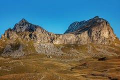 Ajardine com as montanhas no parque nacional Durmitor, Monteneg Imagem de Stock Royalty Free