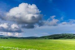 Ajardine com as nuvens brancas no céu azul Imagem de Stock Royalty Free