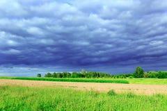 Ajardine com as nuvens escuras do nuvem tempestuosa sob a floresta Foto de Stock Royalty Free