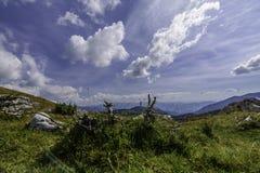 Ajardine com as rochas das montanhas de Bucegi, parte de Carpathians do sul em Romênia Foto de Stock